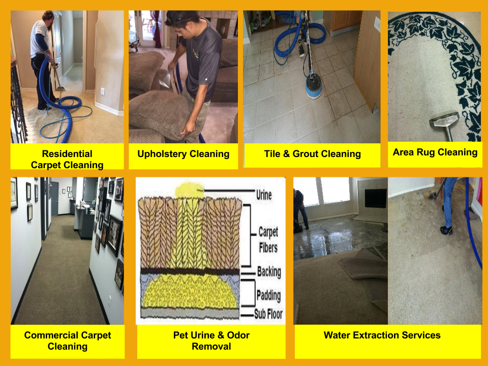 Professional Carpet Cleaning Service At Nw Houston