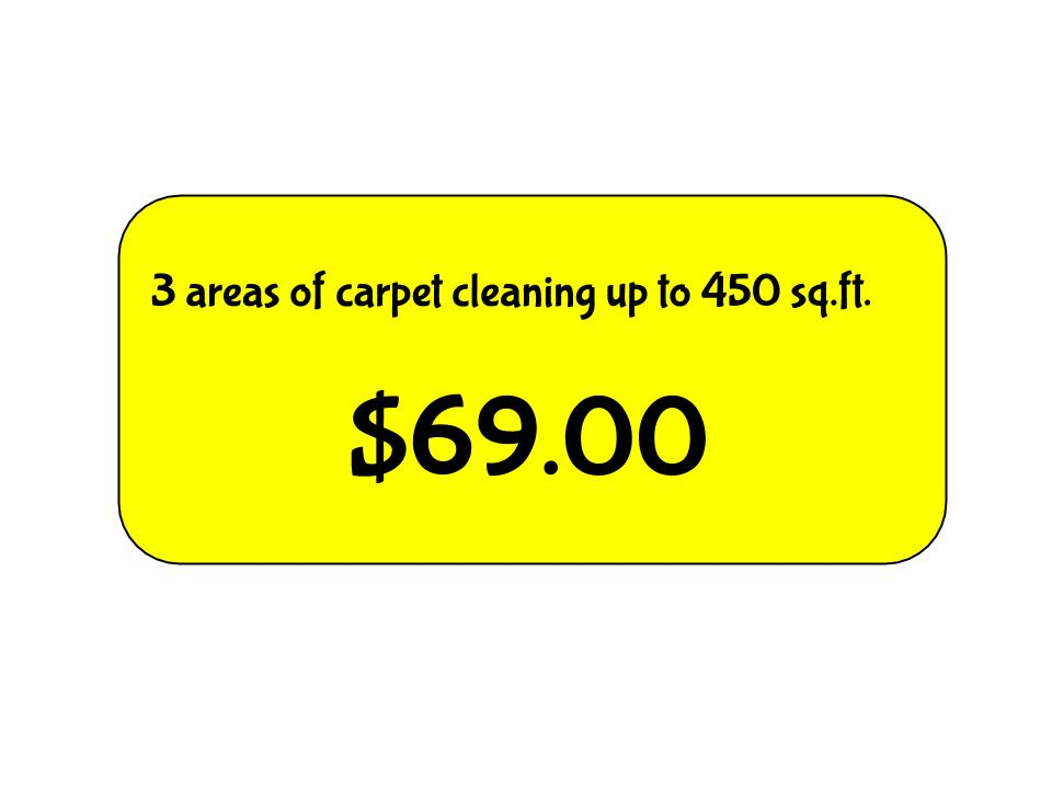 69 00 Special Busy Bee Carpet Steamersbusy Bee Carpet