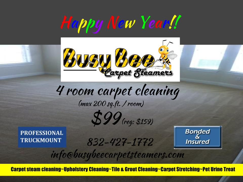 New Years Carpet Busy Bee Carpet Steamersbusy Bee Carpet