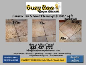 Contact Busy Bee Carpet Cleaning Houston for world-class service