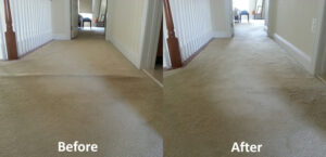 Carpet Stretching Repairs