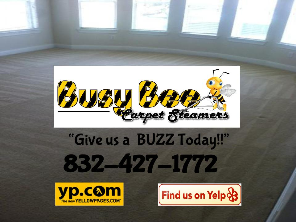 Busy Bee Carpet Steamers Our Carpet Cleaning Reviews